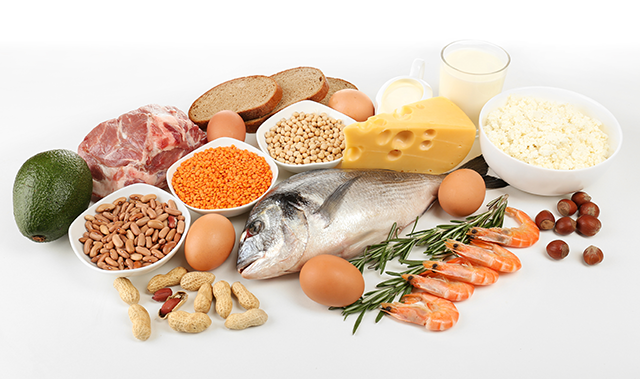 High Protein Wound Healing Foods