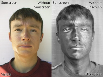 UV_and_Vis_Sunscreen