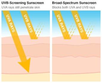 broad-spectrum.jpg